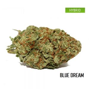 Buy blue dream weed strain online, blue dream weed strain