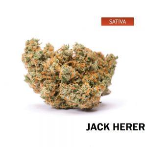 Buy Jack Herer Weed Online