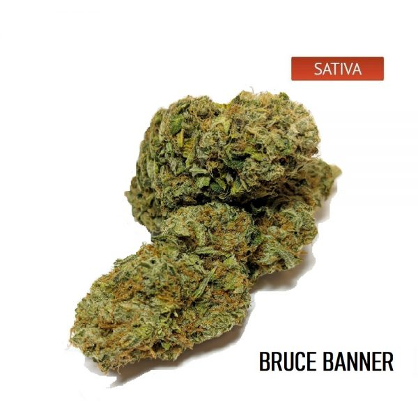 Buy Bruce Banner Weed Strain Online, Bruce Banner Weed Strain