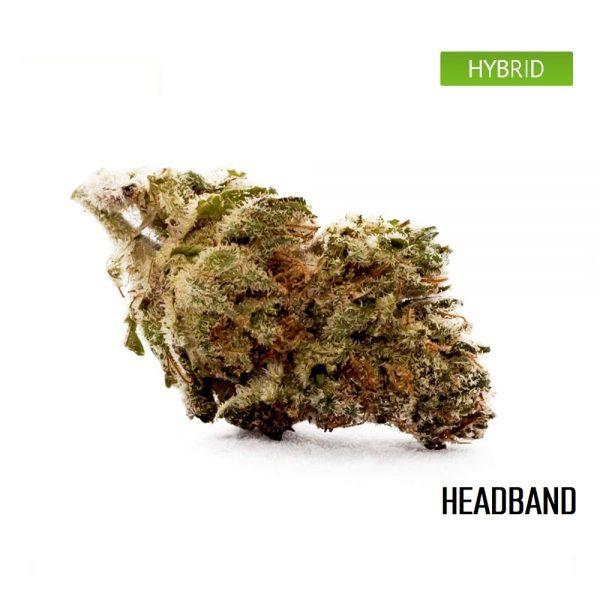 Buy Headband Weed Strain, Headband Weed Strain