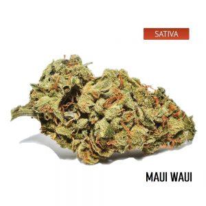 Buy Maui Waui Cannabis Strain, Maui Waui Weed Strain