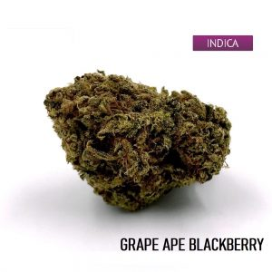 Buy Grape Ape Cannabis Strain Online, Grape Ape Weed Strain