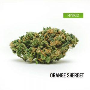 Buy Orange Sherbet Weed Strain Online, Orange Sherbet Weed Strain