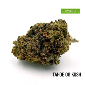 Buy Tahoe OG Kush weed Online